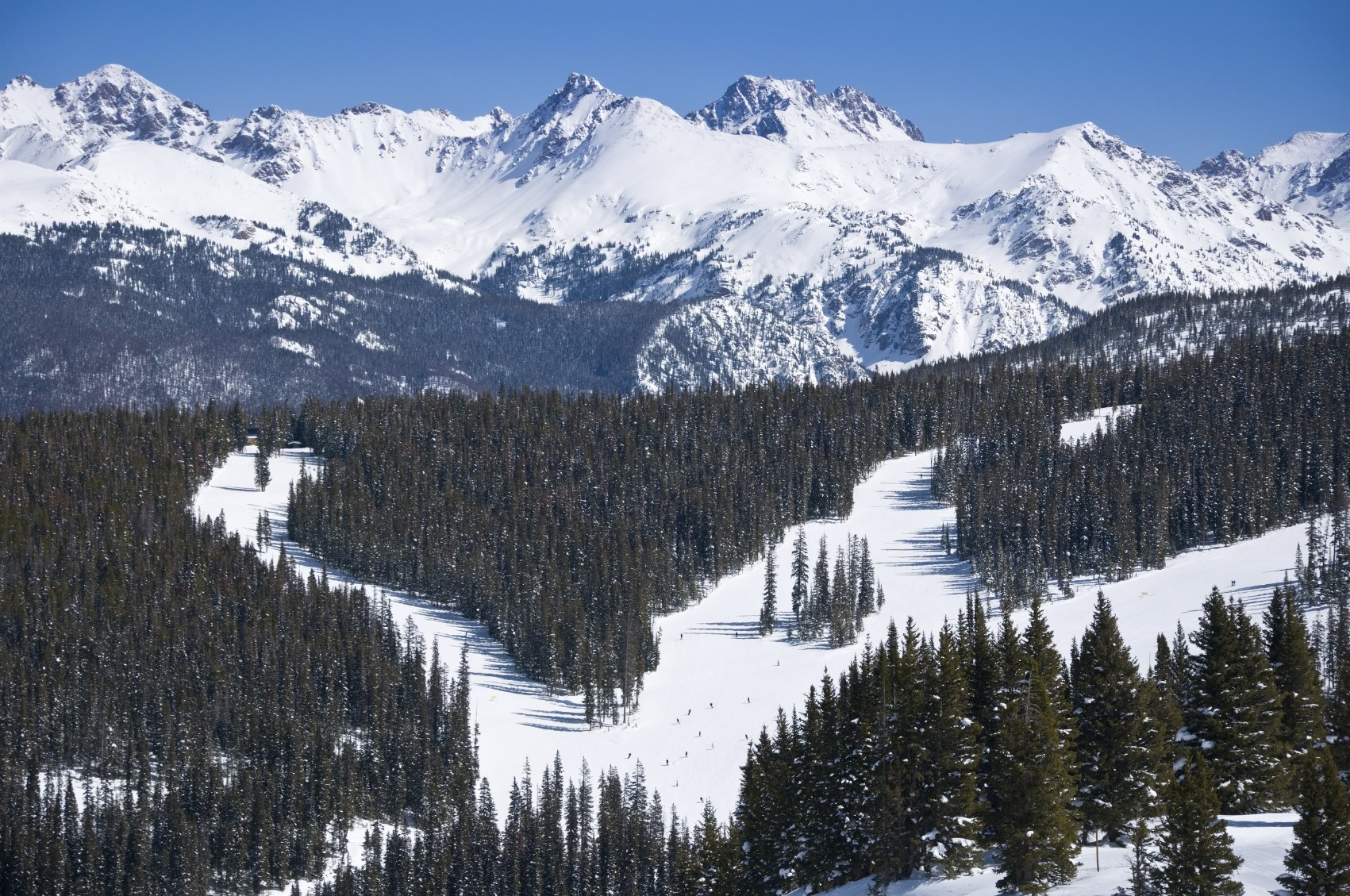 vail last minute ski discount colorado